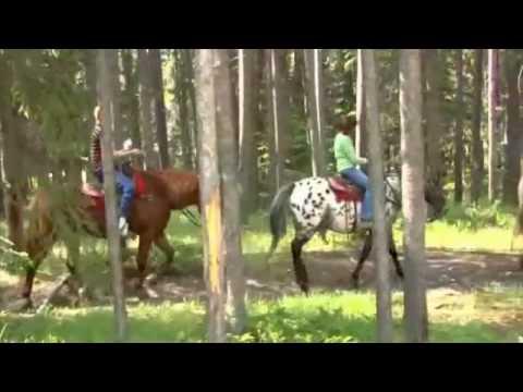 Cruzando un río a caballo en Banff, Alberta Canadá