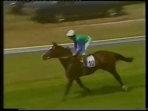 Sadler's Wells - 1984 Coral Eclipse Stakes (Group 1)