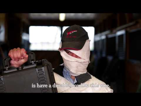 First Aid For Your Horse
