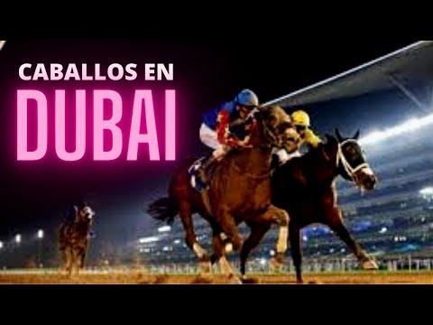 CARRERAS DE CABALLOS EN DUBAI (HIPODROMO DE MEYDAN=