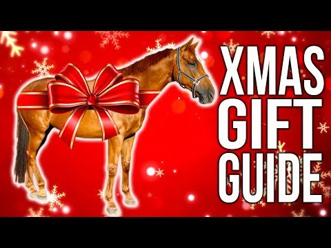 EQUESTRIAN GIFT GUIDE!