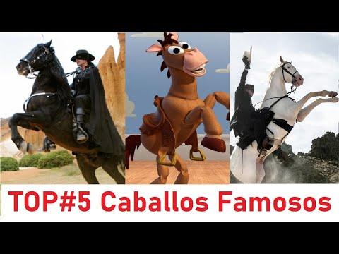 Top 5 Caballos mas populares de la TV y el Cine. Caballos famosos de la televisión y Hollywood.