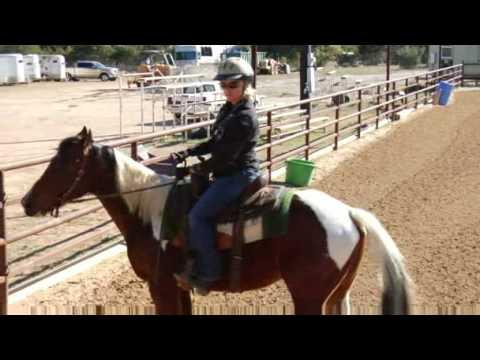 Horseback Riding Tips