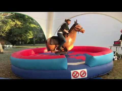 Equestrian Fall Safety Training (Basic)