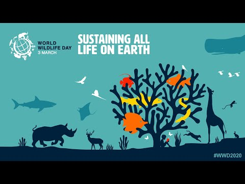 World Wildlife Day 2020 - Sustaining all life on Earth