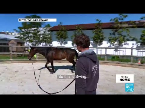 Hit by coronavirus, can France's equestrian sector stay afloat?